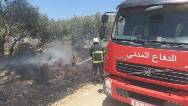 دوز الدفاع المدني يخمد 262 حريقا بأسبوع